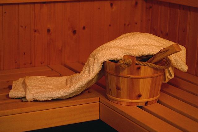Diverse tipuri de saune